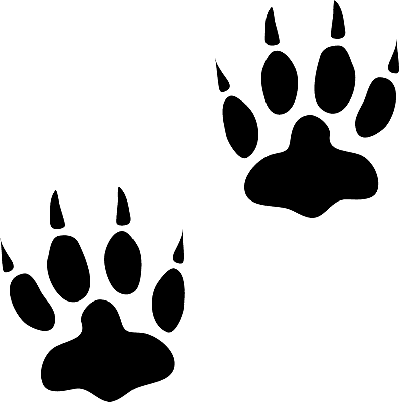 Dog tracks clipart free library Bear Tracks Rubber Stamp   Animal Track Stamps – Stamptopia free library