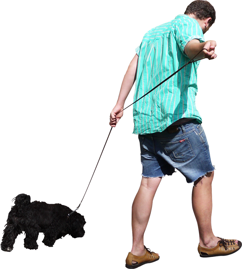 Dog walking clipart free jpg royalty free Walking The Dog PNG Image - PurePNG | Free transparent CC0 PNG Image ... jpg royalty free
