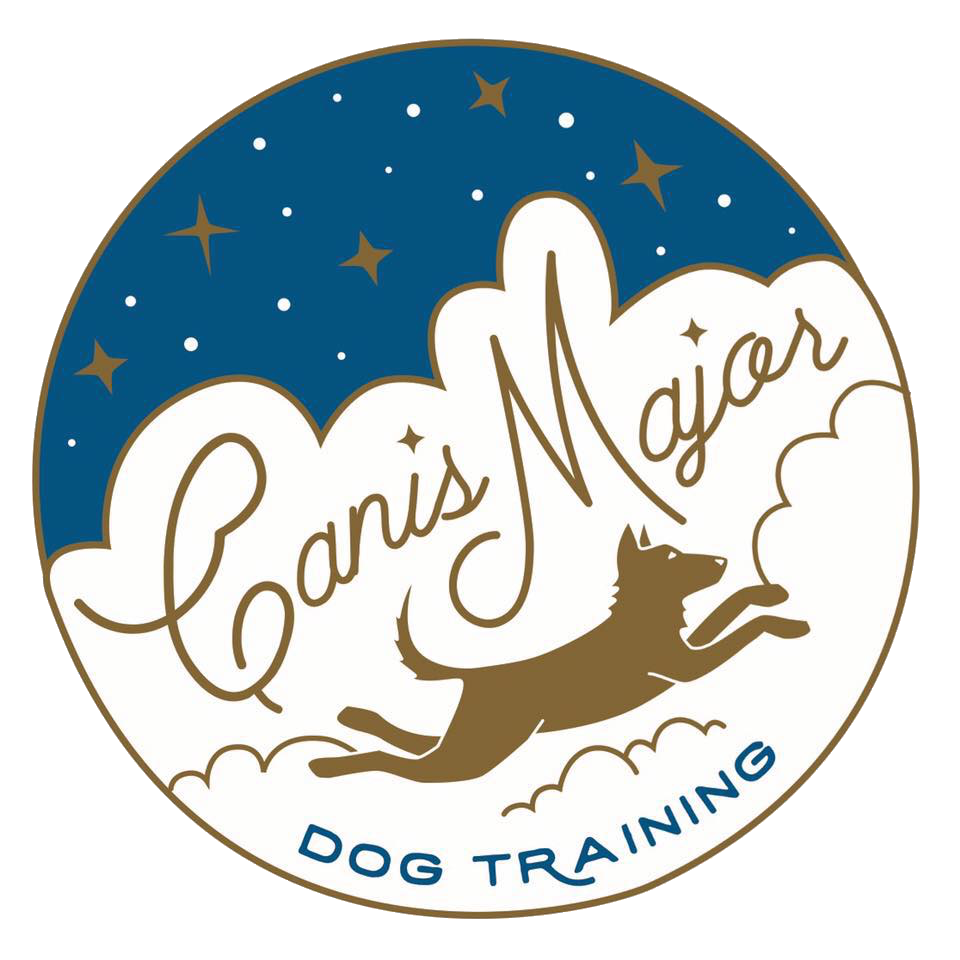 Dog training clipart free png transparent Canis Major Dog Training png transparent