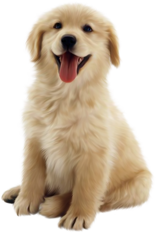 Funny dog clipart graphic transparent Real Dog Clipart (51+) graphic transparent