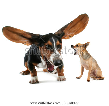 Dog with big ear clipart clip art black and white library Funny Animals Stock Images, Royalty-Free Images & Vectors ... clip art black and white library