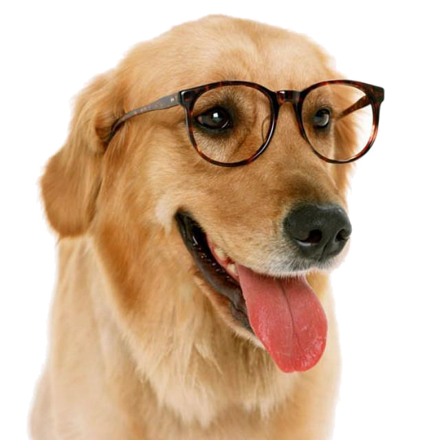 Dog with glasses clipart picture transparent stock Funny Dog With Glass Png picture transparent stock