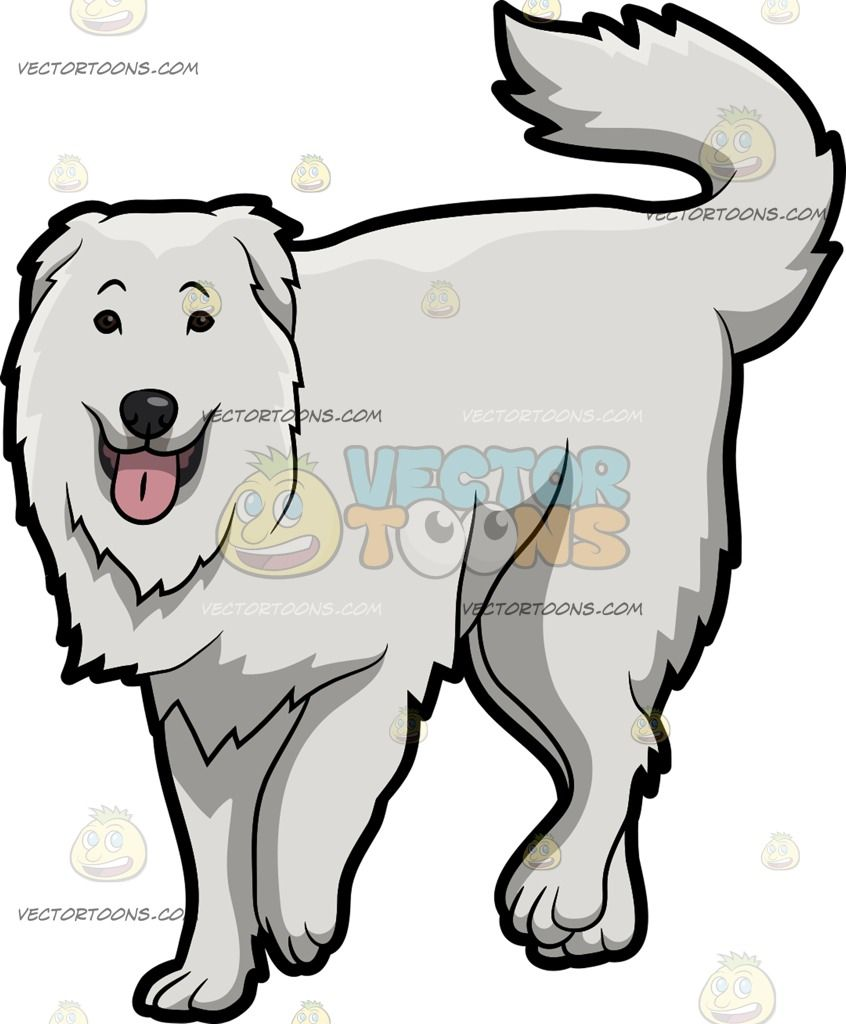 Dogs sitting on a fence with tails clipart back view picture royalty free stock A Lovely Great Pyrenees Dog : A dog with white coat droopy ears ... picture royalty free stock