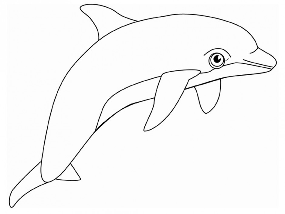 Dolphin outline clipart picture transparent library Free Free Dolphin Images, Download Free Clip Art, Free Clip Art on ... picture transparent library