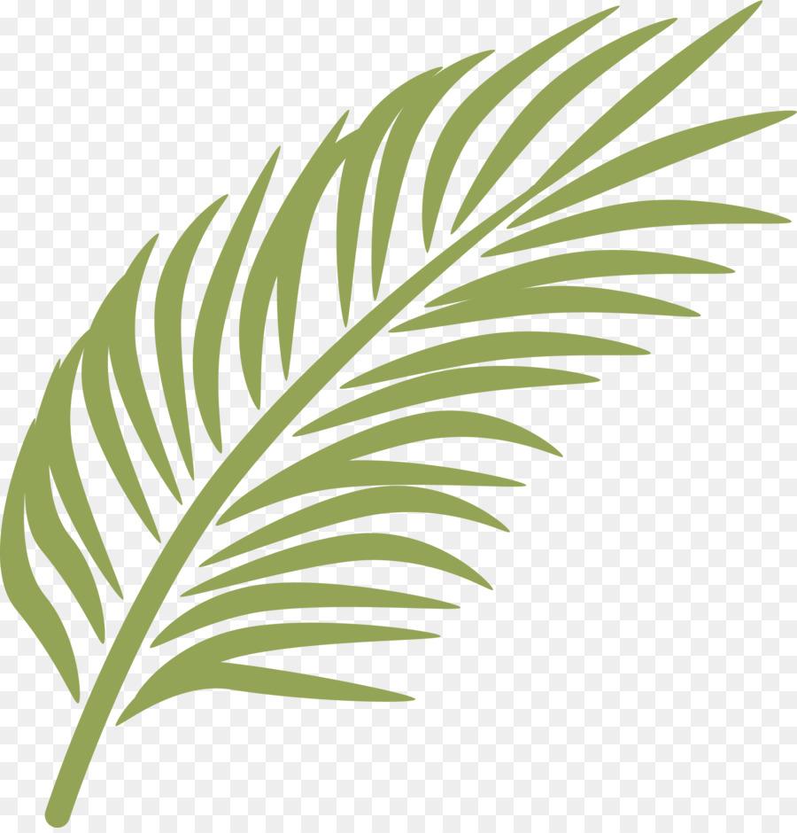 Domingo de ramos clipart clipart free download Rama De Palma, Domingo de Ramos, Arecaceae imagen png - imagen ... clipart free download