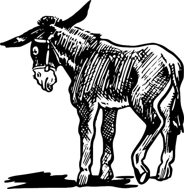 Donkey basketball clipart images picture royalty free library Donkey Drawing Images at GetDrawings.com | Free for personal use ... picture royalty free library