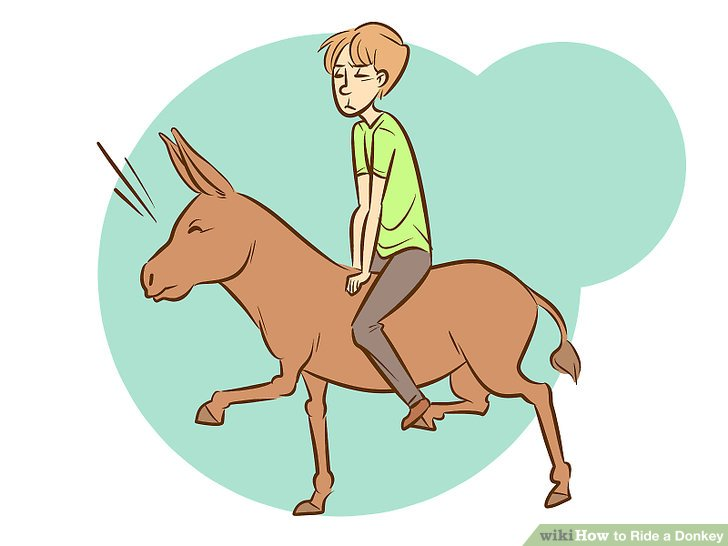 Donkey with blinders clipart jpg library How to Ride a Donkey: 11 Steps (with Pictures) - wikiHow jpg library