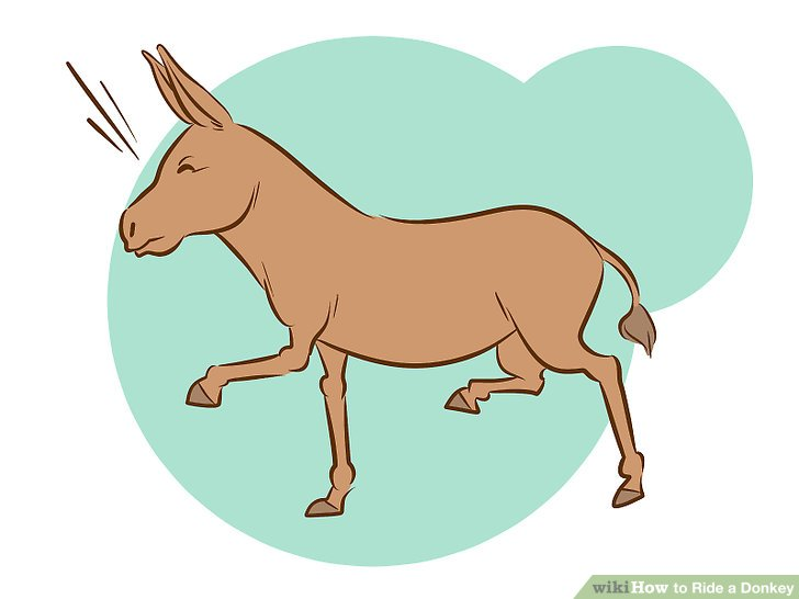 Donkey with blinders clipart picture free download How to Ride a Donkey: 11 Steps (with Pictures) - wikiHow picture free download