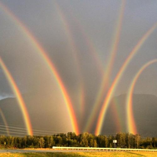 Double rainbow image free library Rainbows | Double Rainbow | Know Your Meme image free library