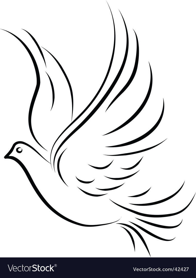 Dove vector cliparts png Dove vector image png