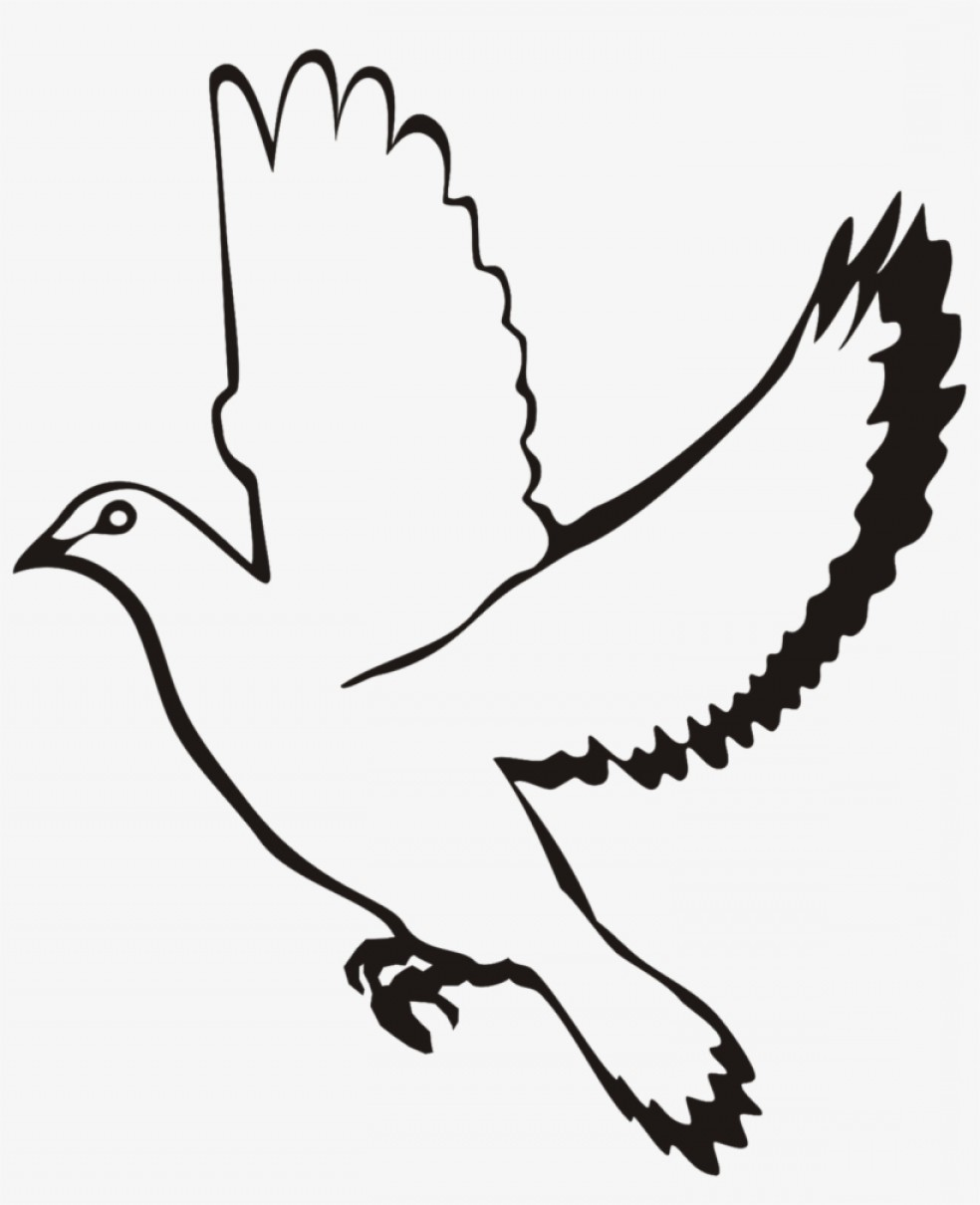 Dove vector cliparts image library Uqrqetyqwhite Flying Dove Clipart White Dove Vector Png | SOIDERGI image library