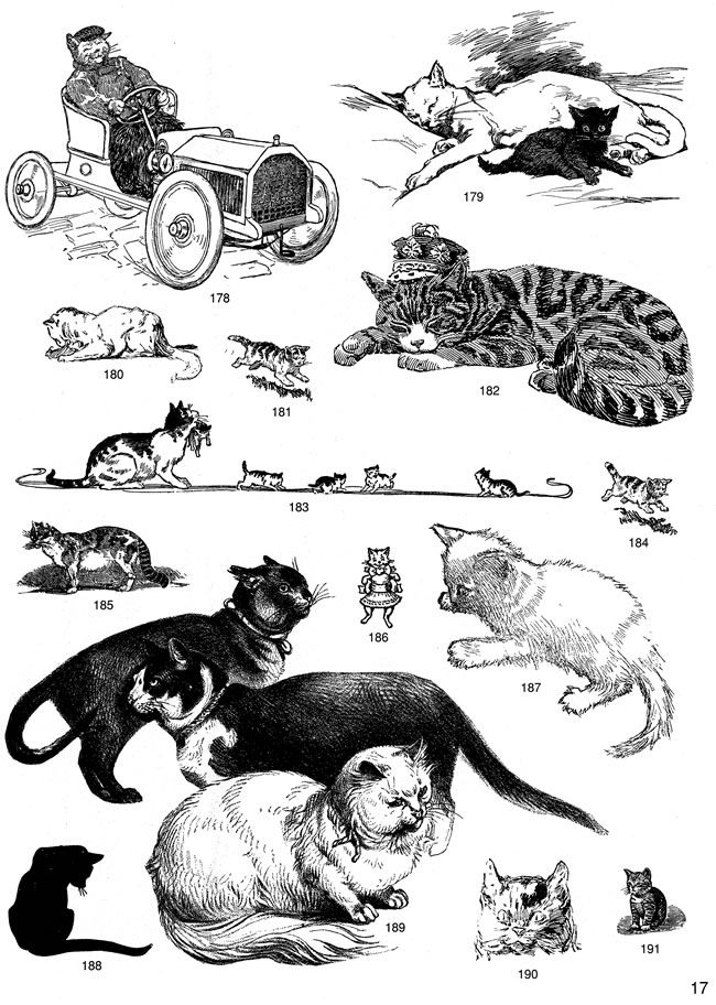 Dover clipart images graphic library stock Dover publications clipart 7 » Clipart Station graphic library stock