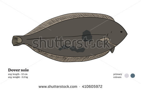 Dover stock image transparent stock Dover stock - ClipartFest image transparent stock