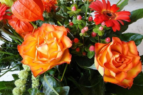 Download flower images free svg freeuse download Rose flowers free stock photos download (11,658 Free stock photos ... svg freeuse download