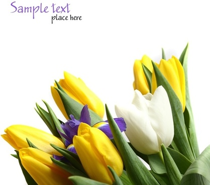 Download flower images free vector freeuse stock Flower images free stock photos download (10,902 Free stock photos ... vector freeuse stock
