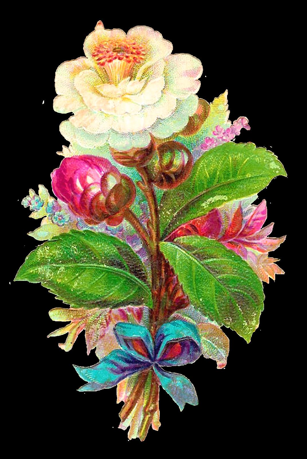 Download flower photos png freeuse stock Antique Images: Digital Flower White Camellia Vintage Clip Art ... png freeuse stock