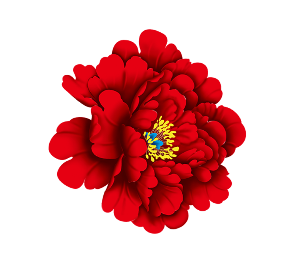 Flowers pics download freeuse download Moutan peony Download Red - Red peony flowers 996*884 transprent Png ... freeuse download