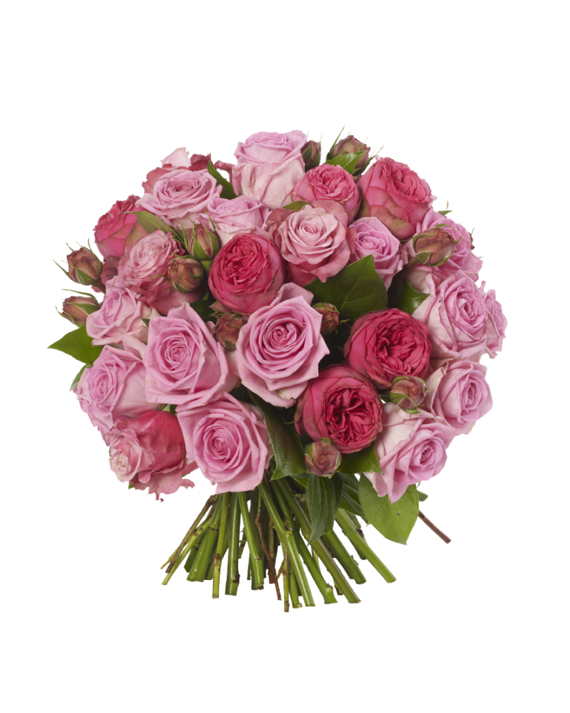 Free download flowers images vector freeuse Pink Roses Flowers Bouquet PNG Free Download - peoplepng.com vector freeuse