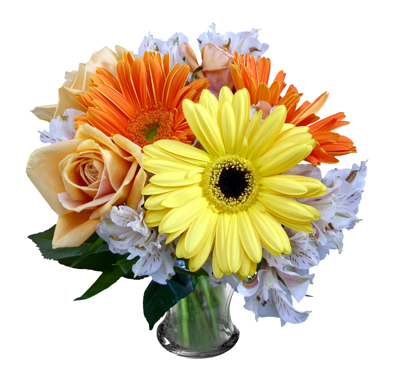 Free download images of flowers free Flowers Free Download Transparent - 18197 - TransparentPNG free