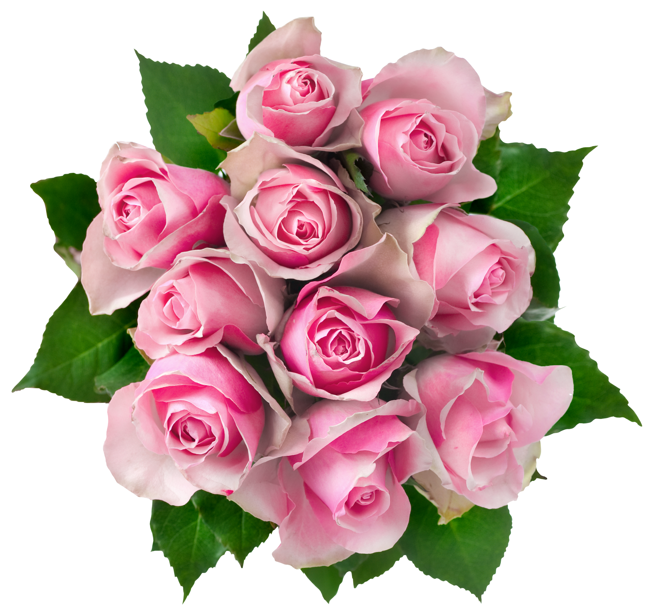 Download images of flowers picture download Bouquet Of Flowers PNG Picture | Web Icons PNG picture download