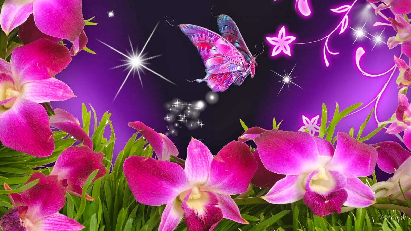 Download images of flowers and butterflies vector transparent stock Download images of flowers and butterflies - ClipartFest vector transparent stock