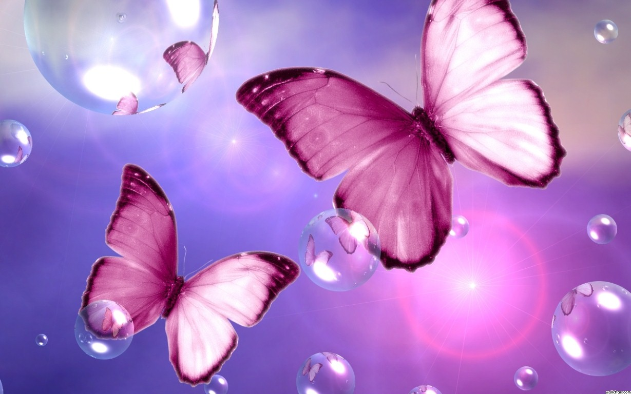 Download Beautiful Pink Butterfly Flower Wallpaper 1229x768 | Full ... banner freeuse download
