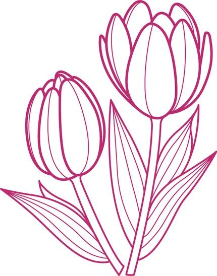 Drawing of tulips clipart png library download Tulip Outline Drawing - ClipArt Best - ClipArt Best | Miscellany ... png library download