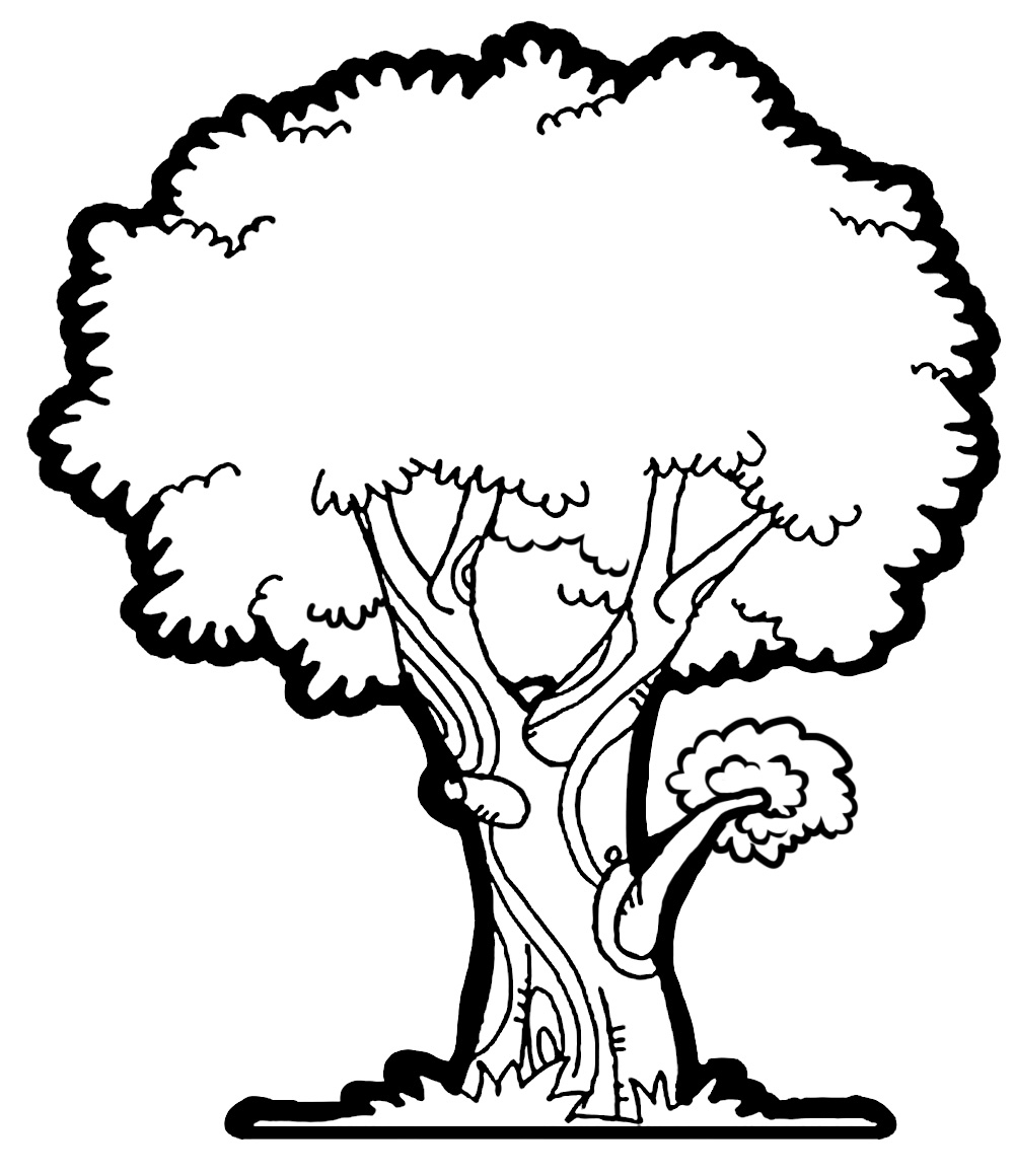 Tree pencil clipart clipart freeuse Tree Sketch Clip Art at PaintingValley.com | Explore collection of ... clipart freeuse