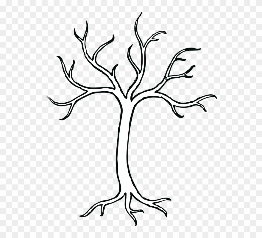 Trunk Clipart Empty Tree - Easy To Draw Tree Without Leaves - Png ... vector stock