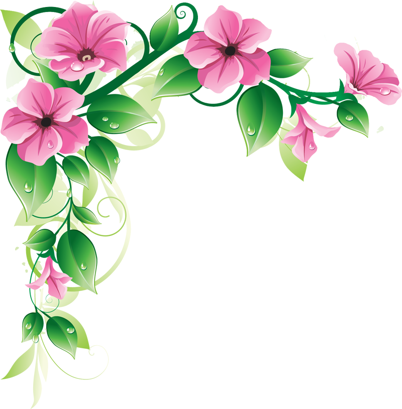 Latestphotoshopimages latest green leaf. Dried flower clipart