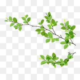 Dry branches clipart free stock 2019 的 Branches Dry Twigs, Branches, Dry Twigs, Tree PNG ... free stock