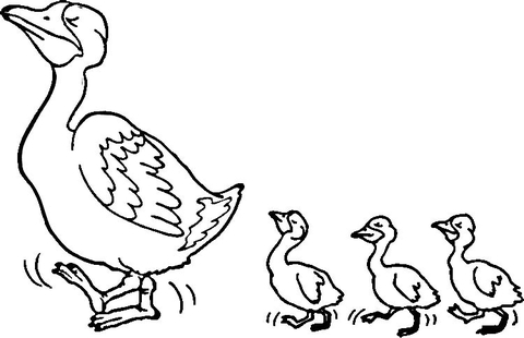 Duck and duckling clipart black and white png freeuse stock Duck and Ducklings coloring page | Free Printable Coloring Pages png freeuse stock