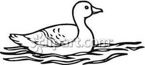Ducks in the water black and white clipart png black and white stock wildlife outline images | Outline Of A Duck In Water - Royalty Free ... png black and white stock
