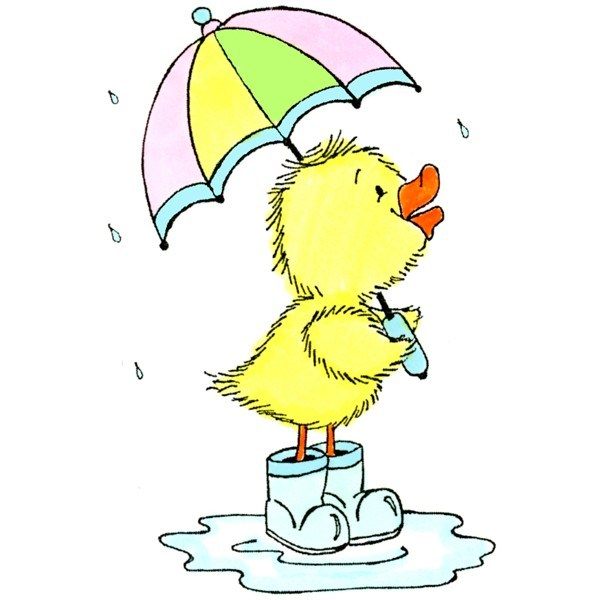 Duck with umbrella clipart