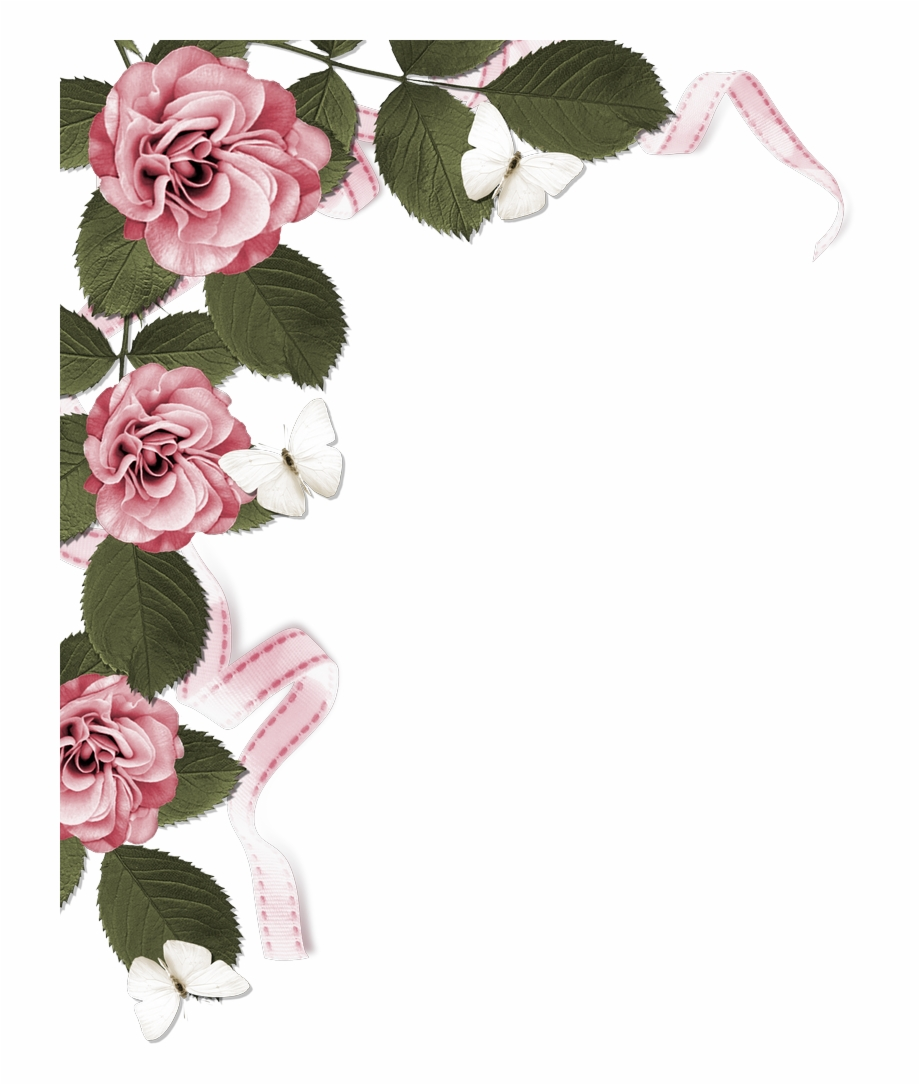 Dusty rose colored flower free clipart boarder image black and white download Rose Page Border - Dusty Pink Flower Borders, HD Png Download ... image black and white download
