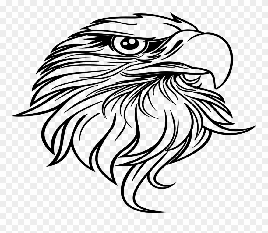 Eagle beak clipart vector freeuse download Eagle Beak Curved Bird Wildlife Png Image Clipart (#2551761 ... vector freeuse download