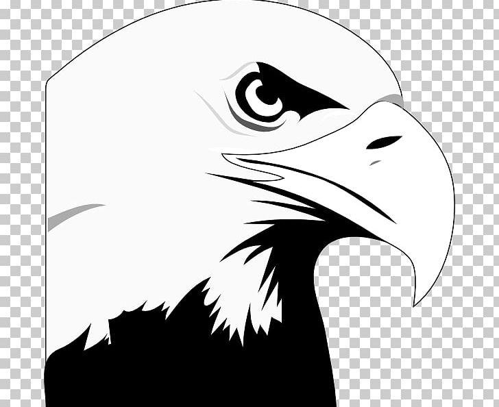 Eagle beak clipart clip art freeuse download Bald Eagle White-tailed Eagle PNG, Clipart, Accipitriformes, Bald ... clip art freeuse download