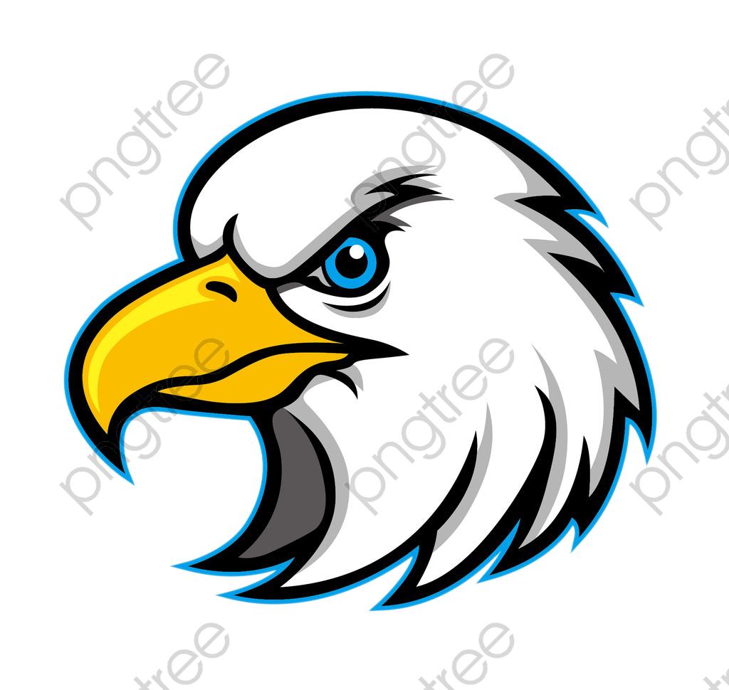 Eagle beak clipart graphic library stock Bald eagle,Eagle,Bird,Accipitridae,Bird of prey,Accipitriformes,Clip ... graphic library stock