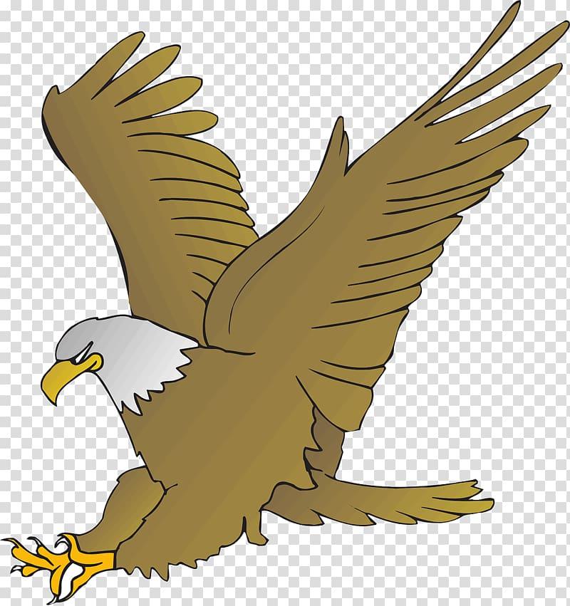 Eagle cartoon clipart png freeuse download Bald Eagle Cartoon Drawing , eagle transparent background PNG ... png freeuse download