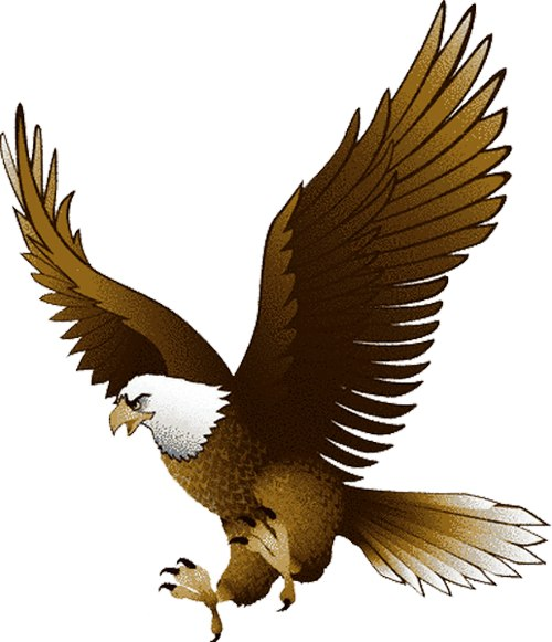Eagle clipart images jpg transparent stock Free Free Eagle Images, Download Free Clip Art, Free Clip Art on ... jpg transparent stock