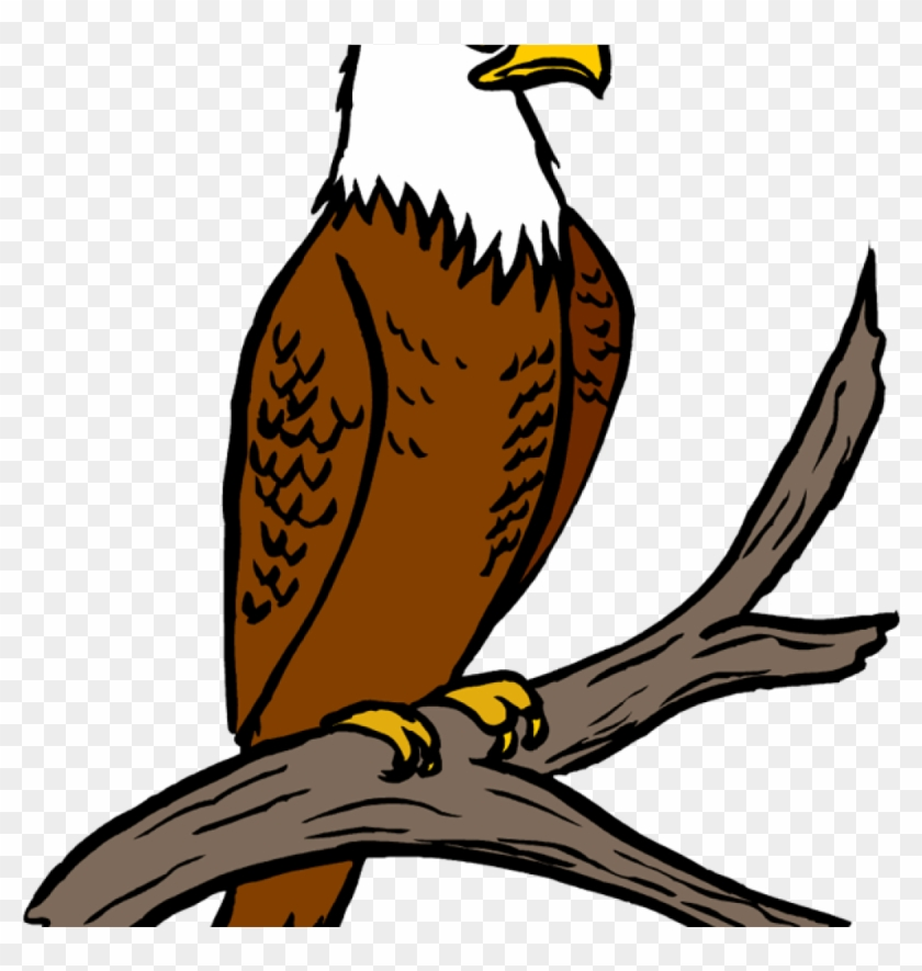 Eagle clipart images royalty free download Free Eagle Clipart Eagle Feather Clipart - Eagle Clipart, HD Png ... royalty free download