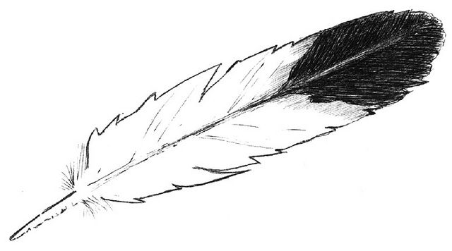 Eagle feather clipart jpg black and white Eagle Feather logo | Ink me! | Eagle feathers, Feather drawing ... jpg black and white
