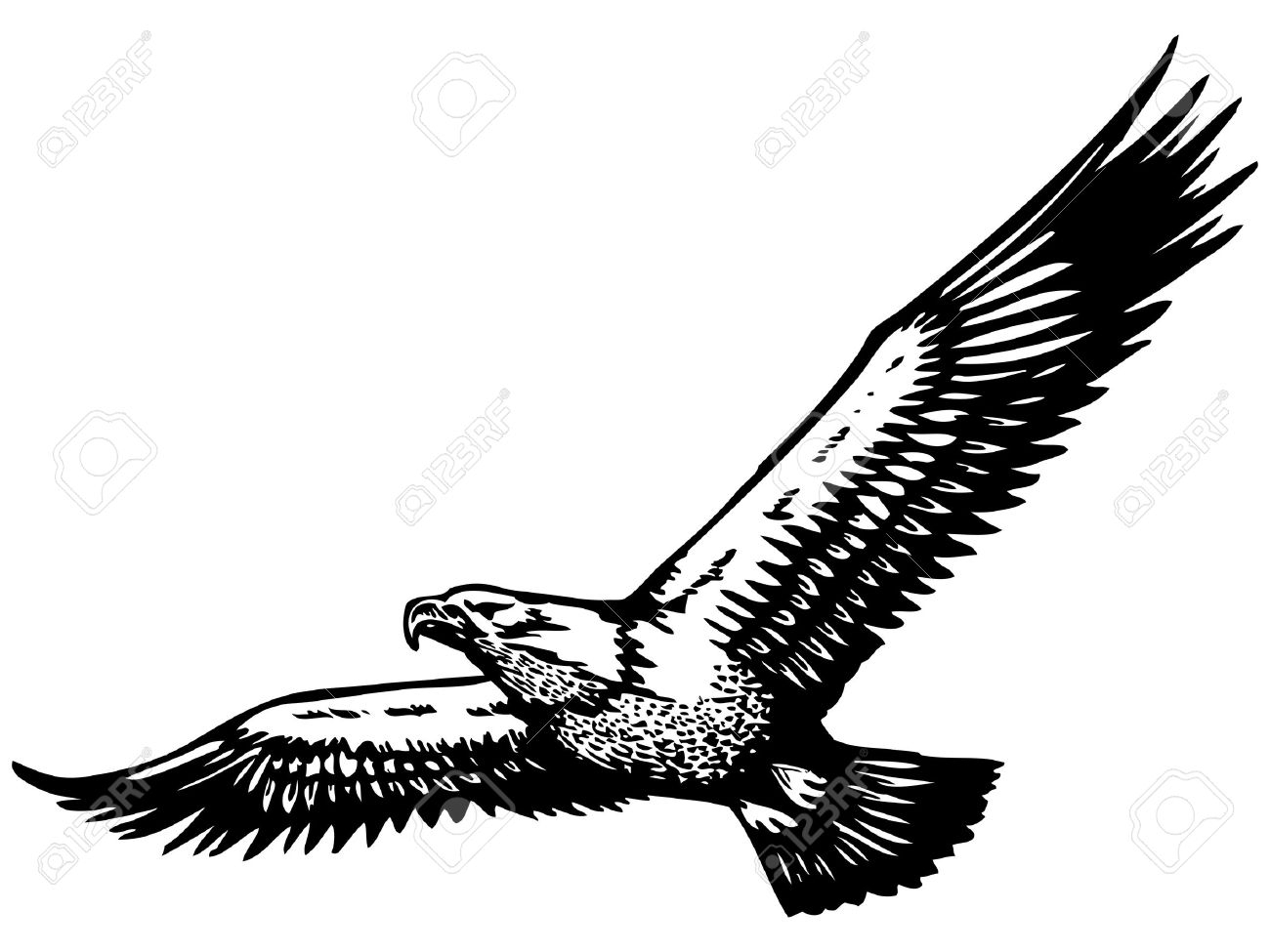 Eagle flying clipart black and white clip free library Eagle Flying Drawing | Free download best Eagle Flying Drawing on ... clip free library