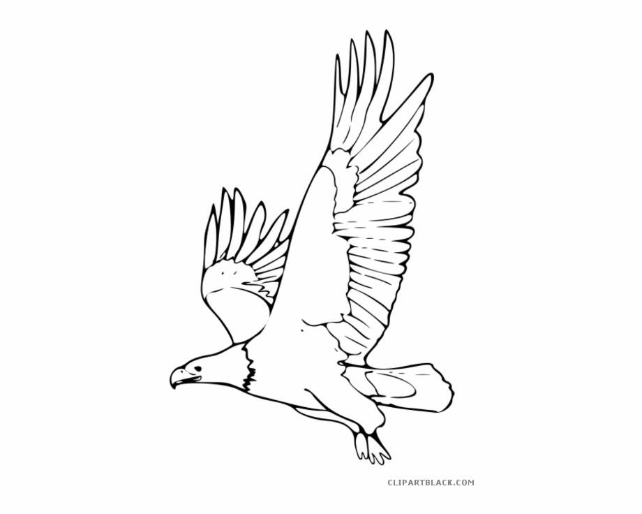 Eagle flying clipart black and white clip stock Flying Clipartblack Com Animal Free Black White - Dibujo De Ave ... clip stock