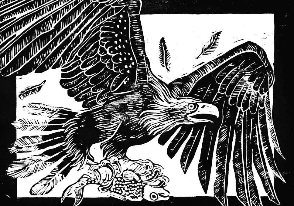 Eagle flying in clouds clipart black and white banner black and white No flight of fancy: How the white-tailed eagle may soon be soaring ... banner black and white