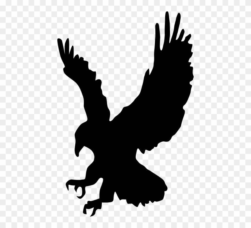 Cliparts buy clip art. Flying eagle clipart black and white