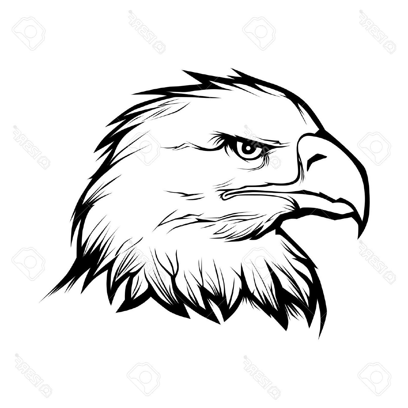 Eagle head clipart black and white jpg library download Eagle head clipart black and white 5 » Clipart Station jpg library download