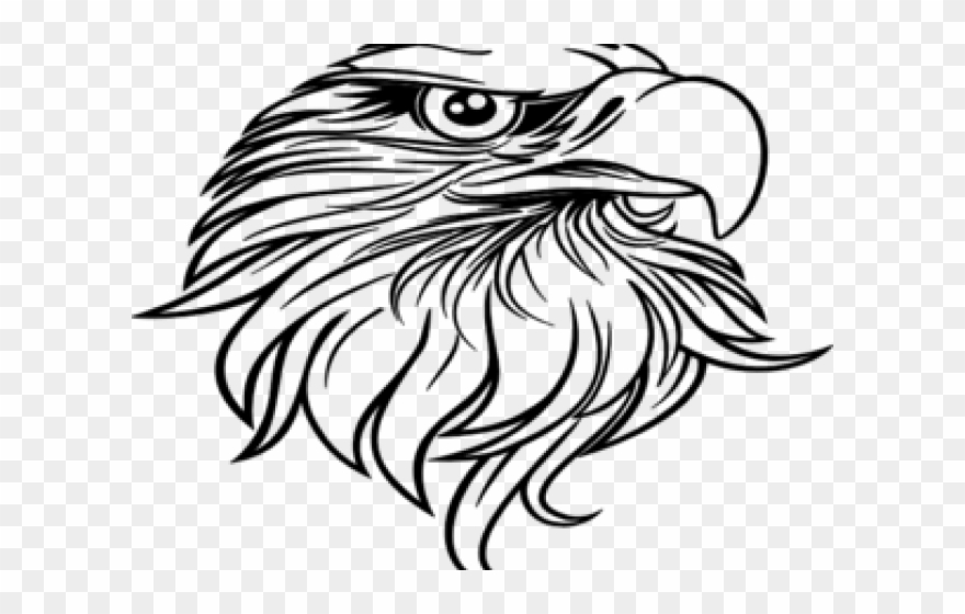Black and white eagle clipart png black and white download Black Eagle Clipart Vector - Eagle Head Clipart Black And White ... png black and white download