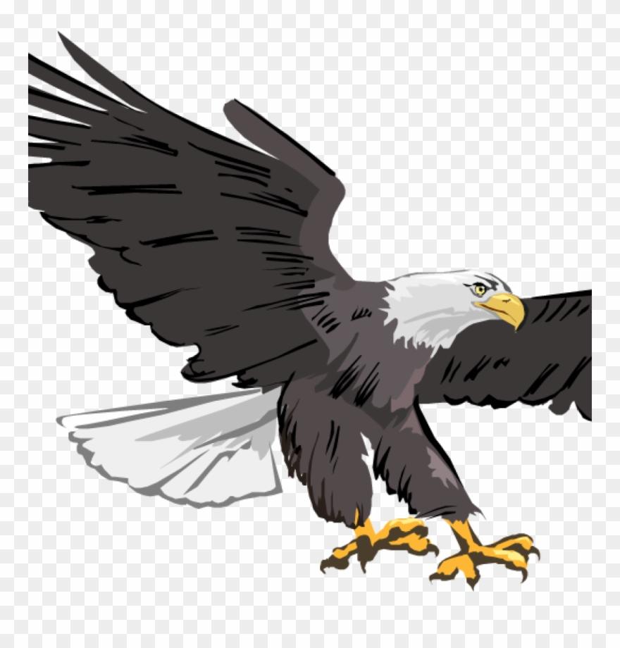 Eagle images free clipart banner transparent library Free Clipart Of Eagles Free Clipart Of Eagles Free - Cafepress Eagle ... banner transparent library