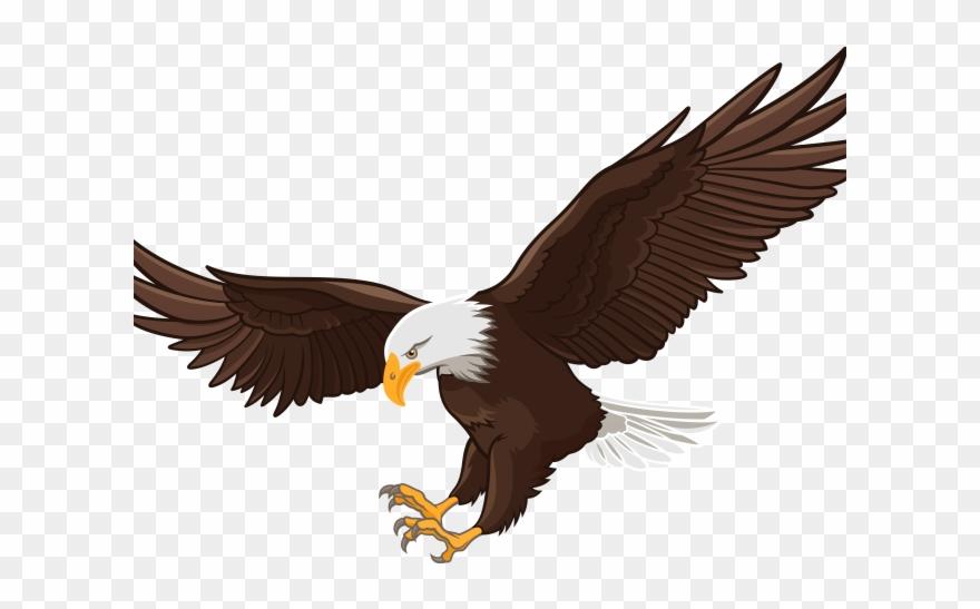 Clipart bald eagle freeuse download Flight Clipart Clip Art - Clip Art Bald Eagle Png Transparent Png ... freeuse download